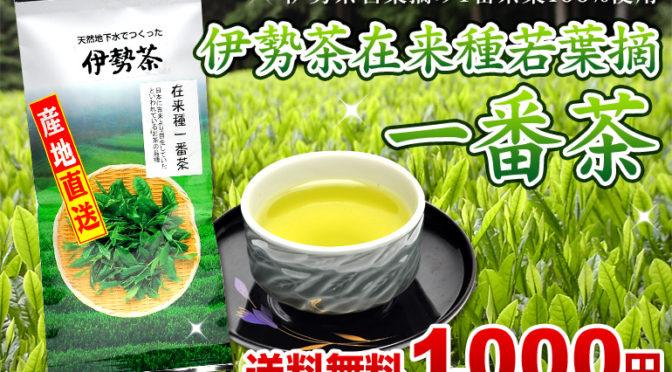 新発売★在来種若葉摘み1番茶1000円ポッキリ送料無料